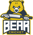 bear-cricket